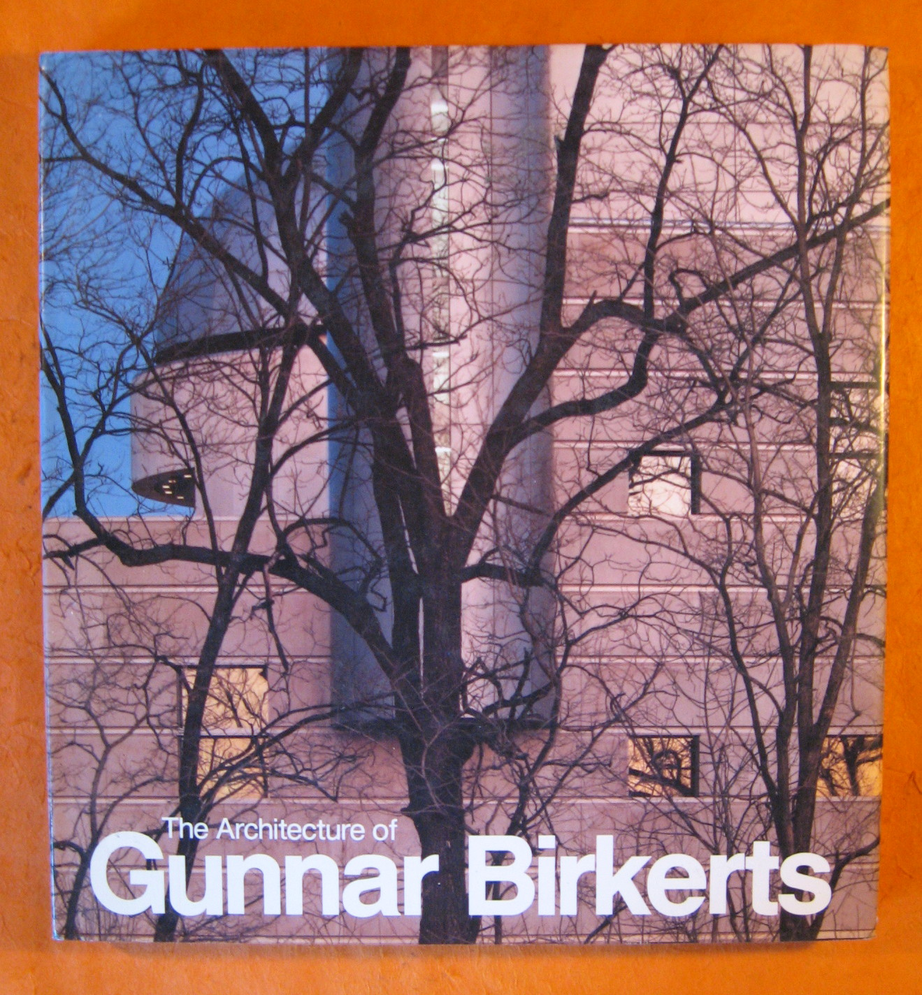 Image for Architecture of Gunnar Birkerts, The
