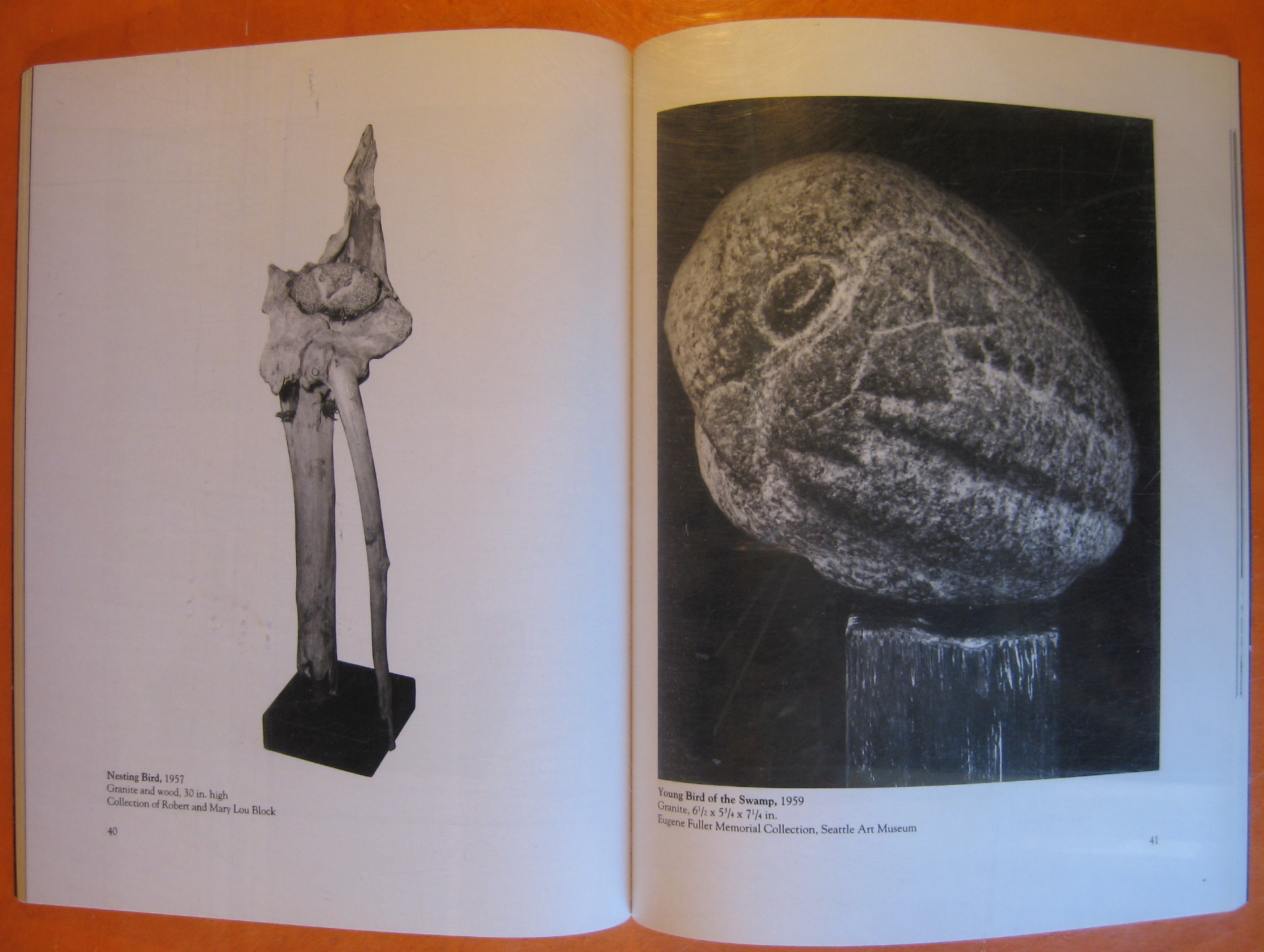 Image for Spirit in the Stone: The Visionary Art of James W. Washington , Jr