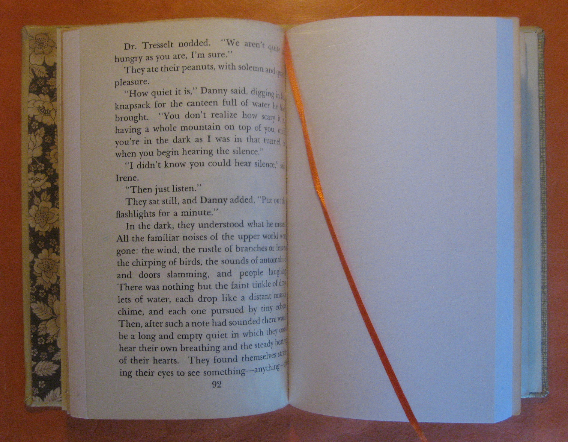 Image for Blank Journal (Danny Dunn and the Fossil Cave) / Blank Book / Diary / Sketch Book