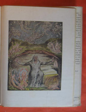 Image for Blake:  The Mystic Genius