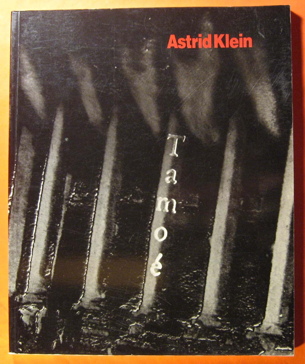 Image for Astrid Klein:  Photoworks 1984-1989
