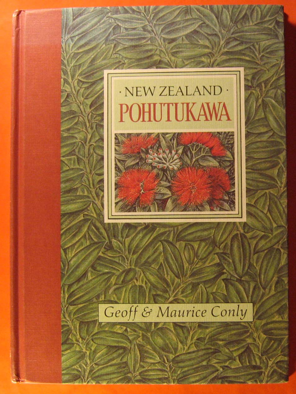 New Zealand Pohutukawa, Conly, Geoff; Conly, Maurice