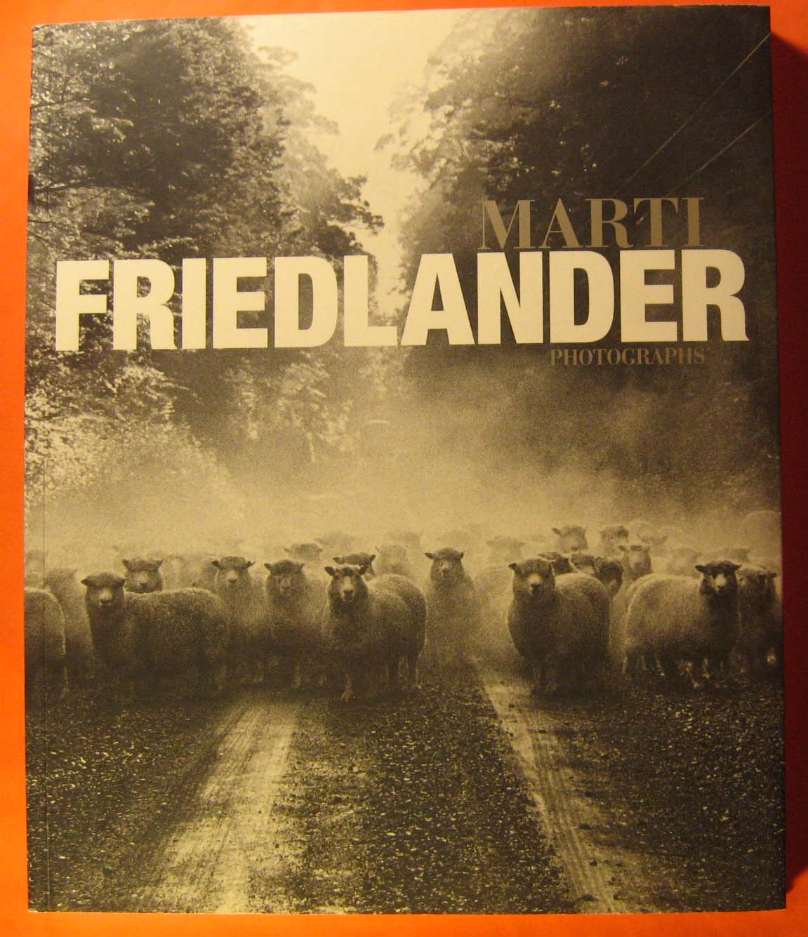 Image for Marti Friedlander