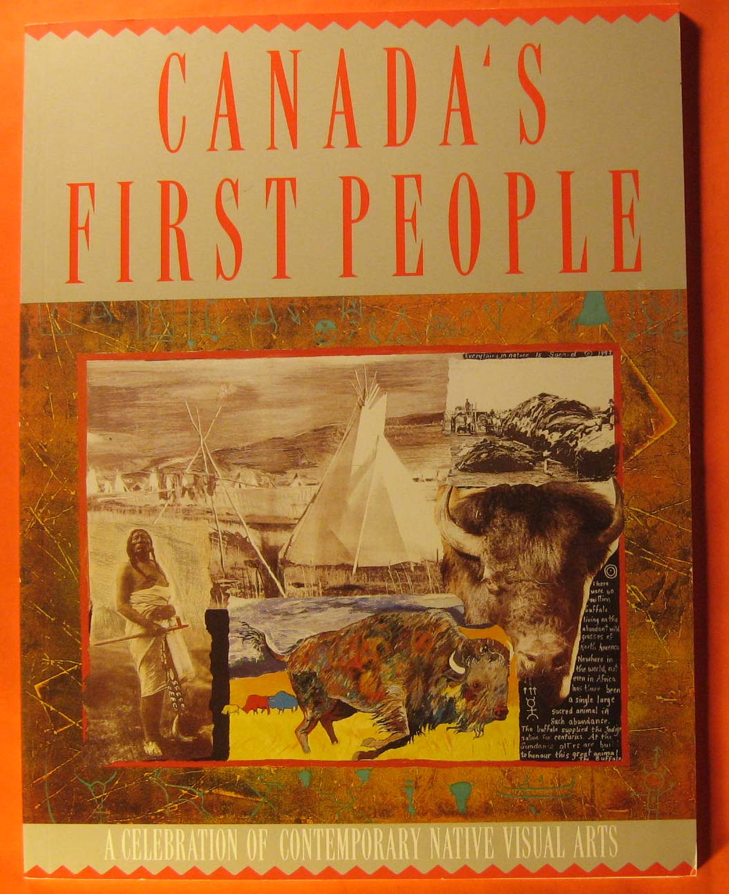 Image for Canada's first people : a celebration of contemporary native visual arts.