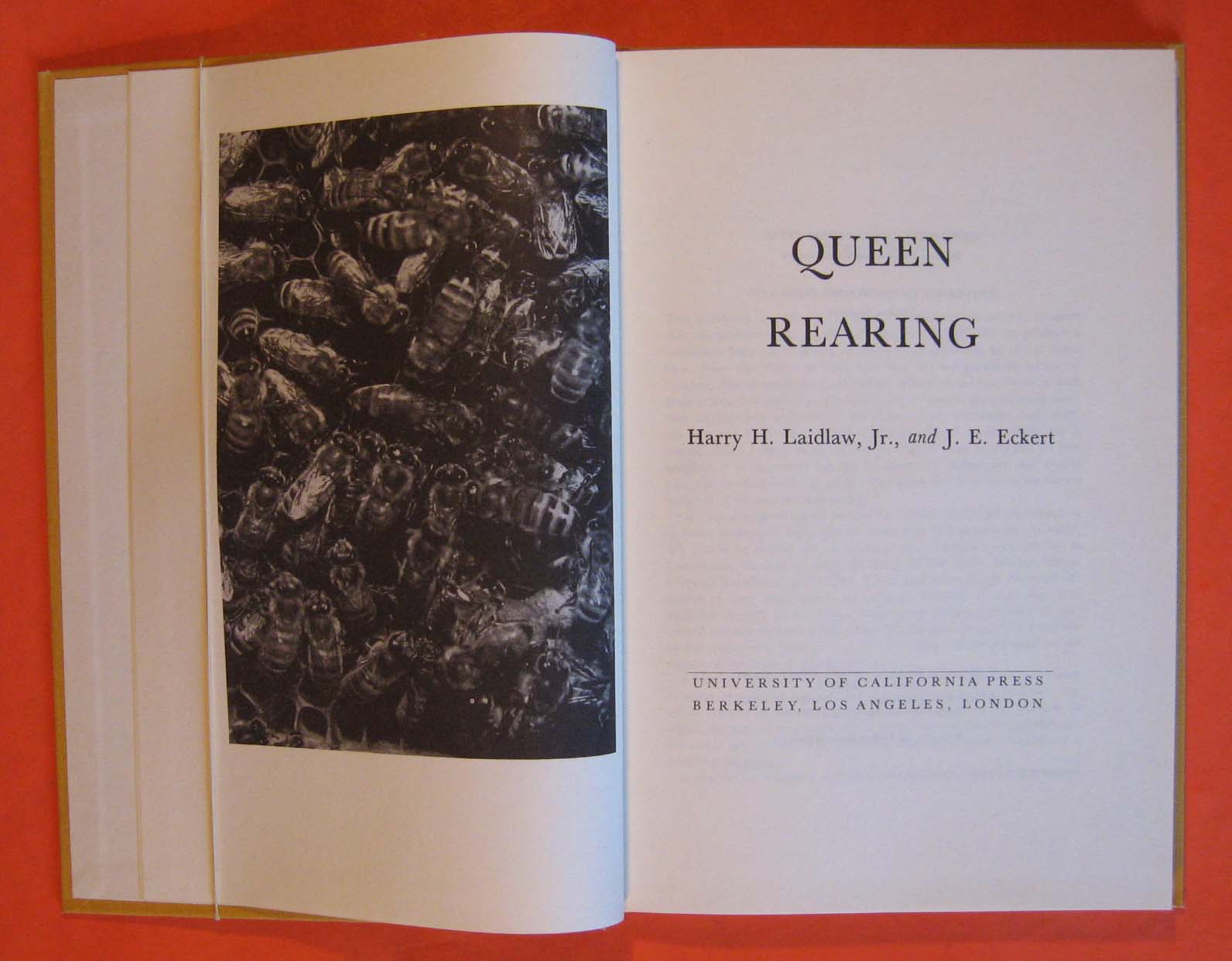 Image for Queen Rearing
