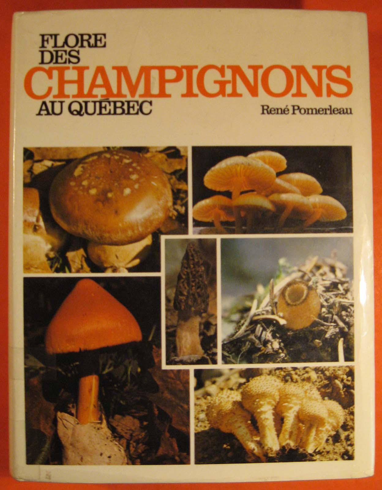 Image for Flore Des Champignons Au Quebec et Regions Limitrophes