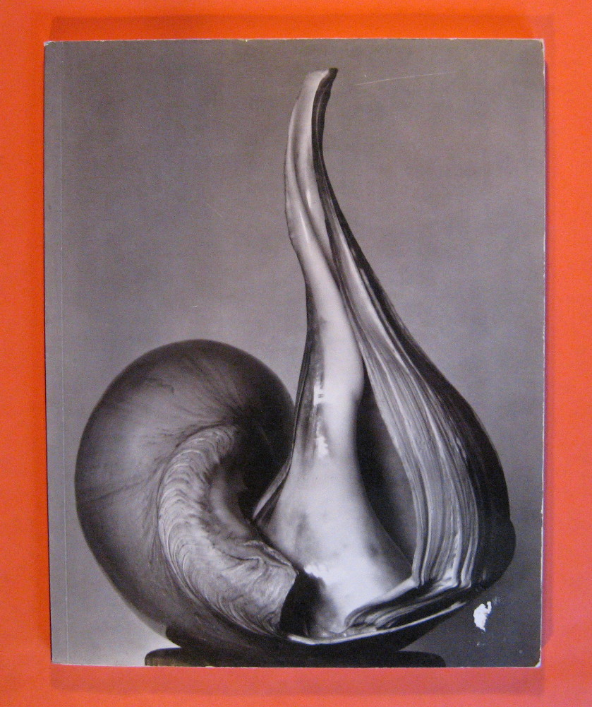 E W 100: Centennial Essays in Honor of Edward Weston  / Untitled 41, Bunnell, Peter, C. & David Featherstone (eds.)