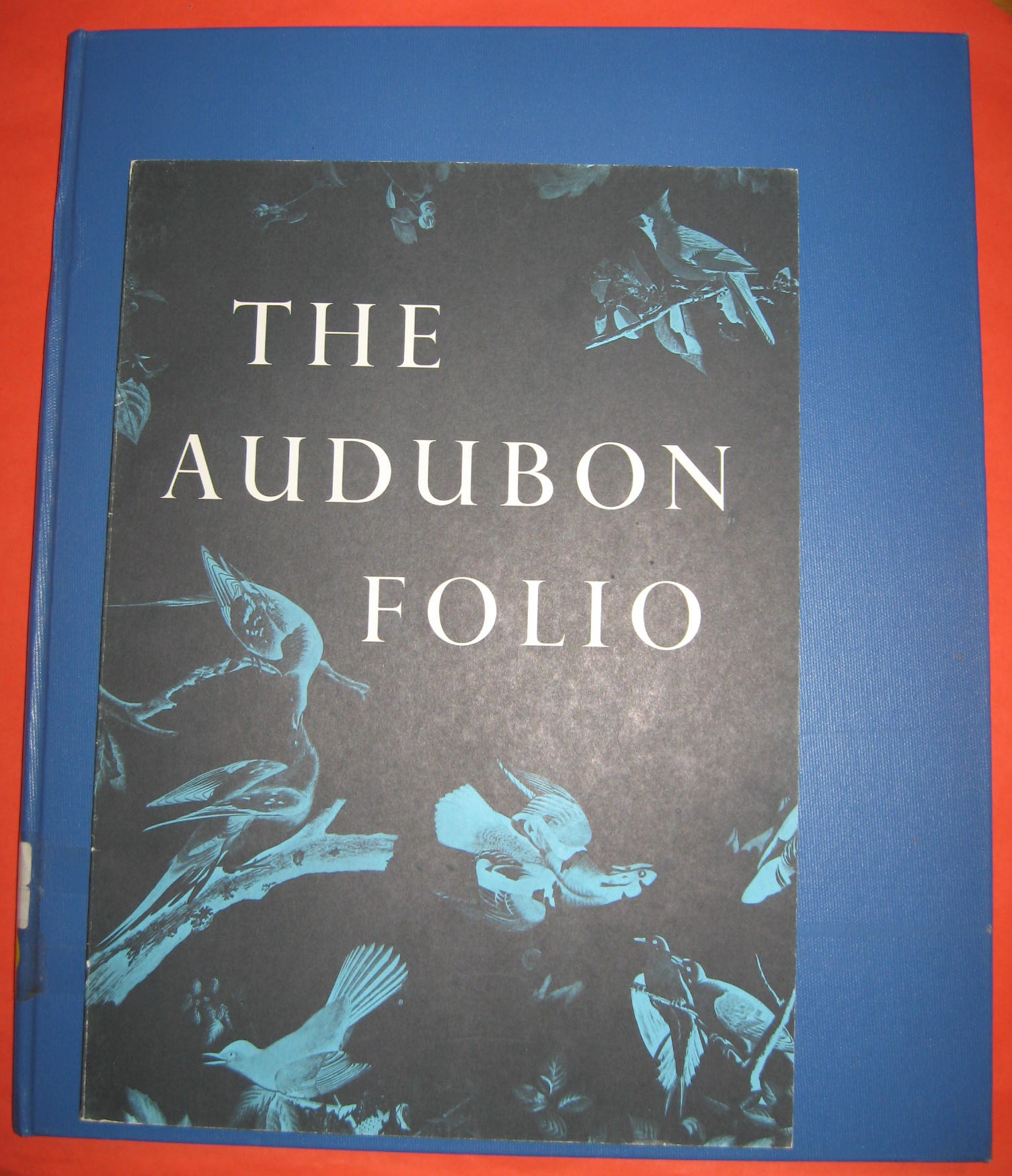 The Audubon Folio : 30 Great Bird Paintings, Audubon, James; Dock, George