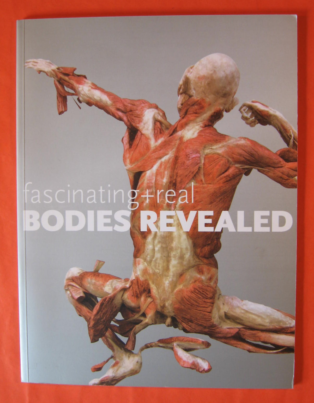 Fascinating + Real Bodies Revealed, Geller, Judith B. (ed.)
