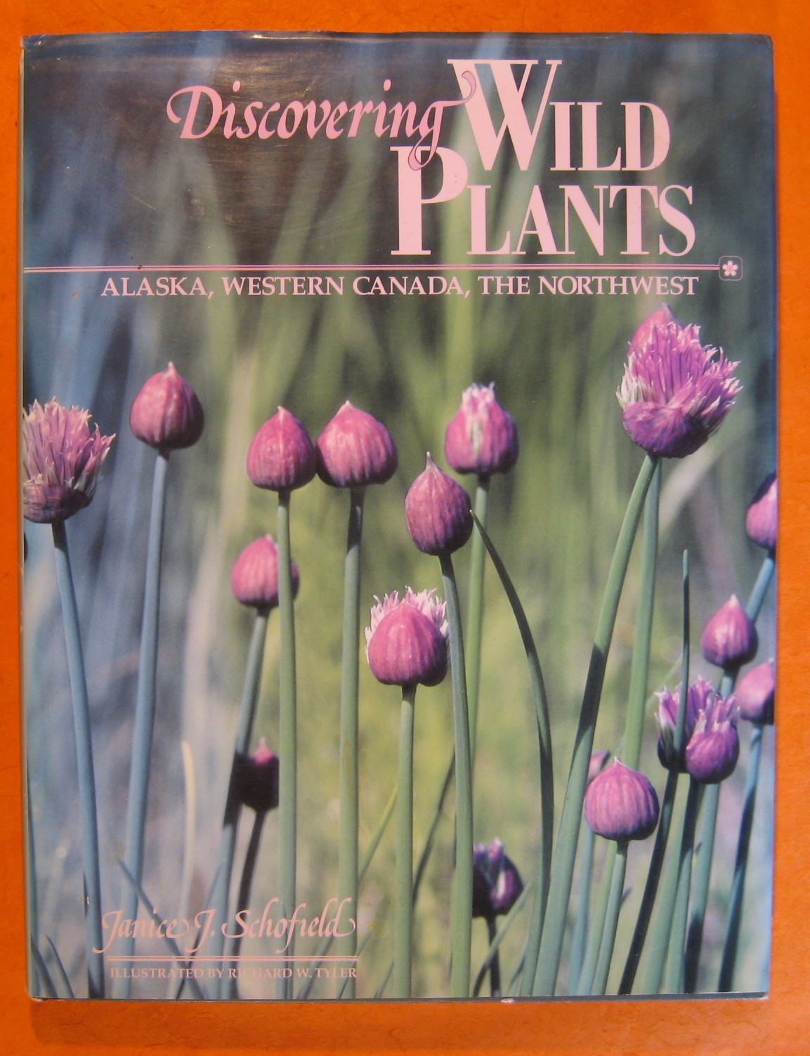Image for Discovering Wild Plants: Alaska, Western Canada, the Northwest