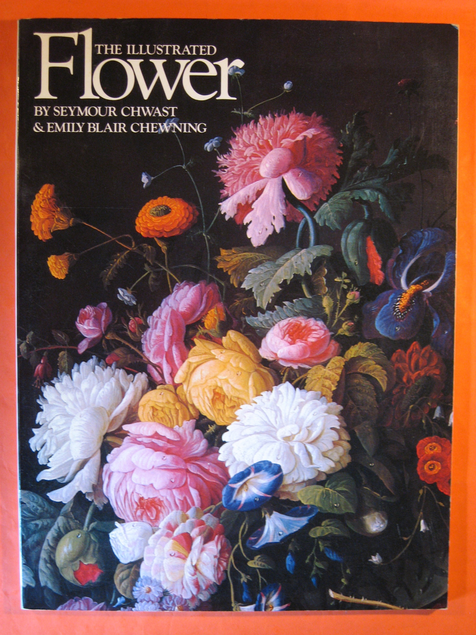 The Illustrated Flower, Chewning, Emily Blair