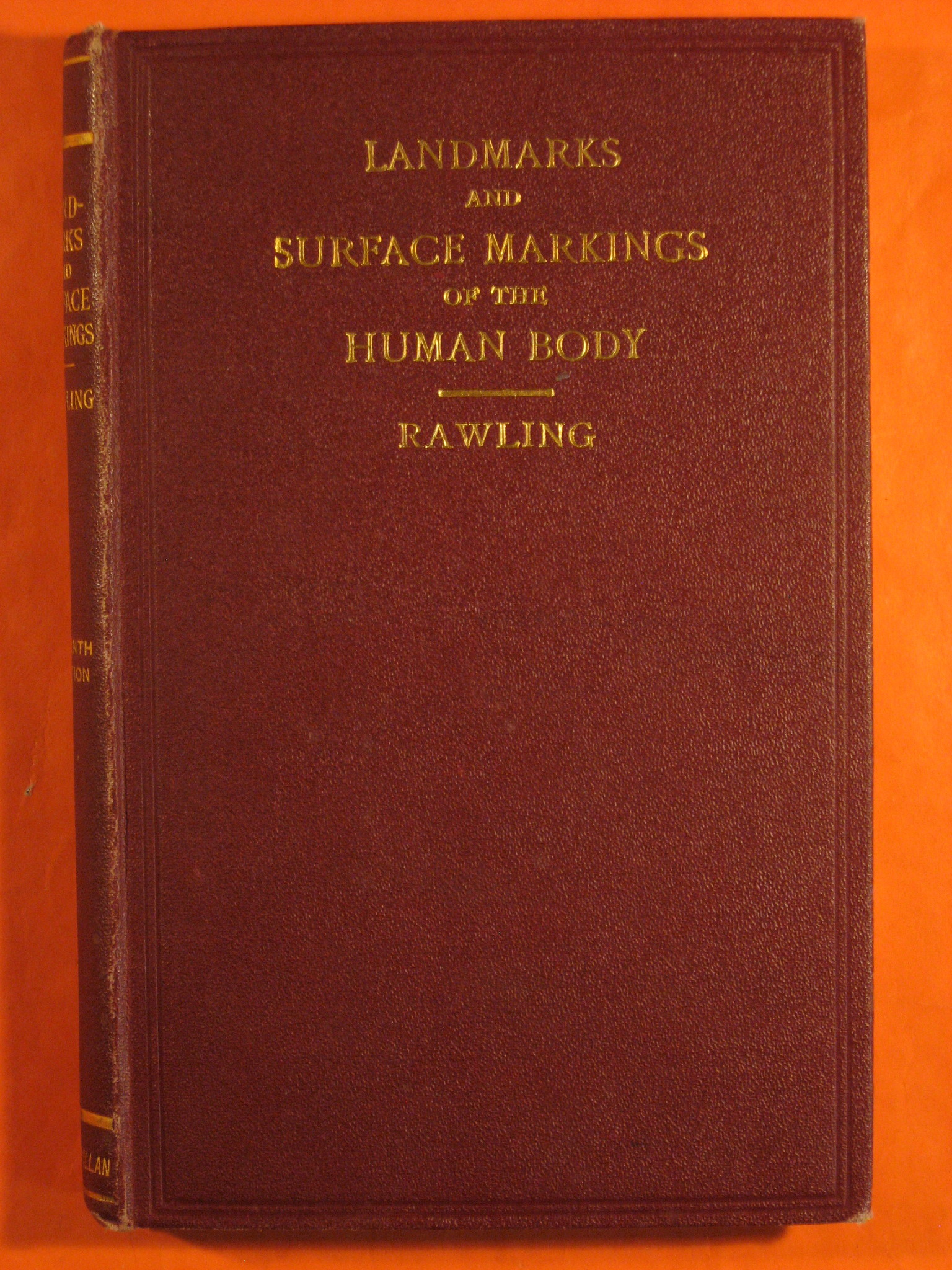 Landmarks and Surface Markings of the Human Body, Rawling, L. Bathe