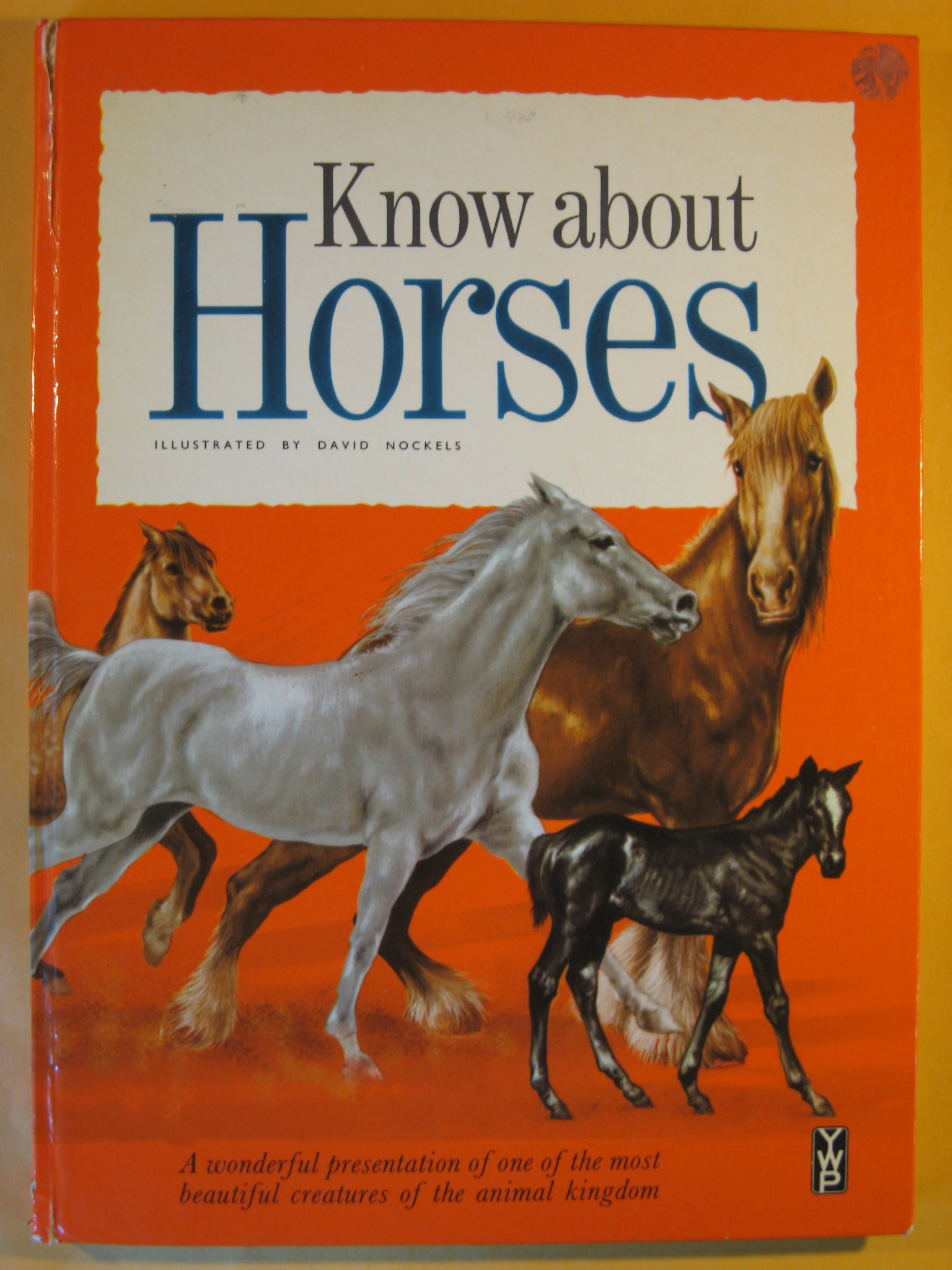 Know About Horses, Holmes, Edward