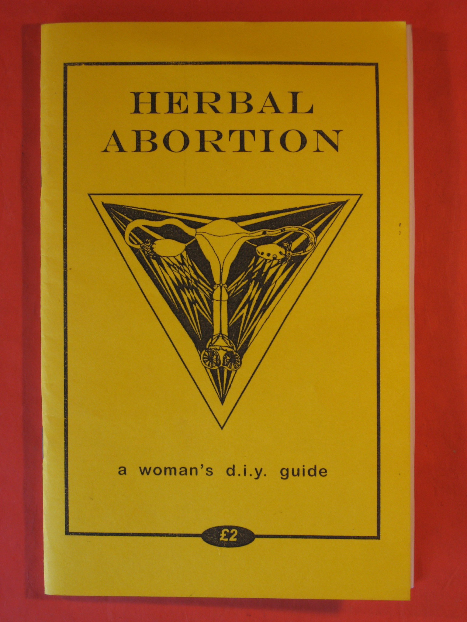 Herbal Abortion:  A Woman's D.I.Y. Guide, Annwen