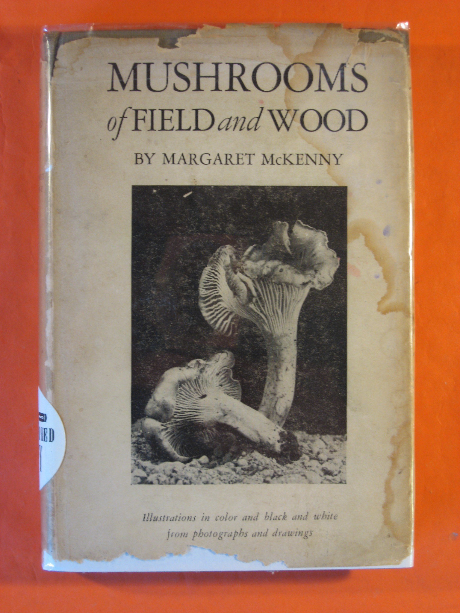Mushrooms of Field and Wood, McKenny, Margaret