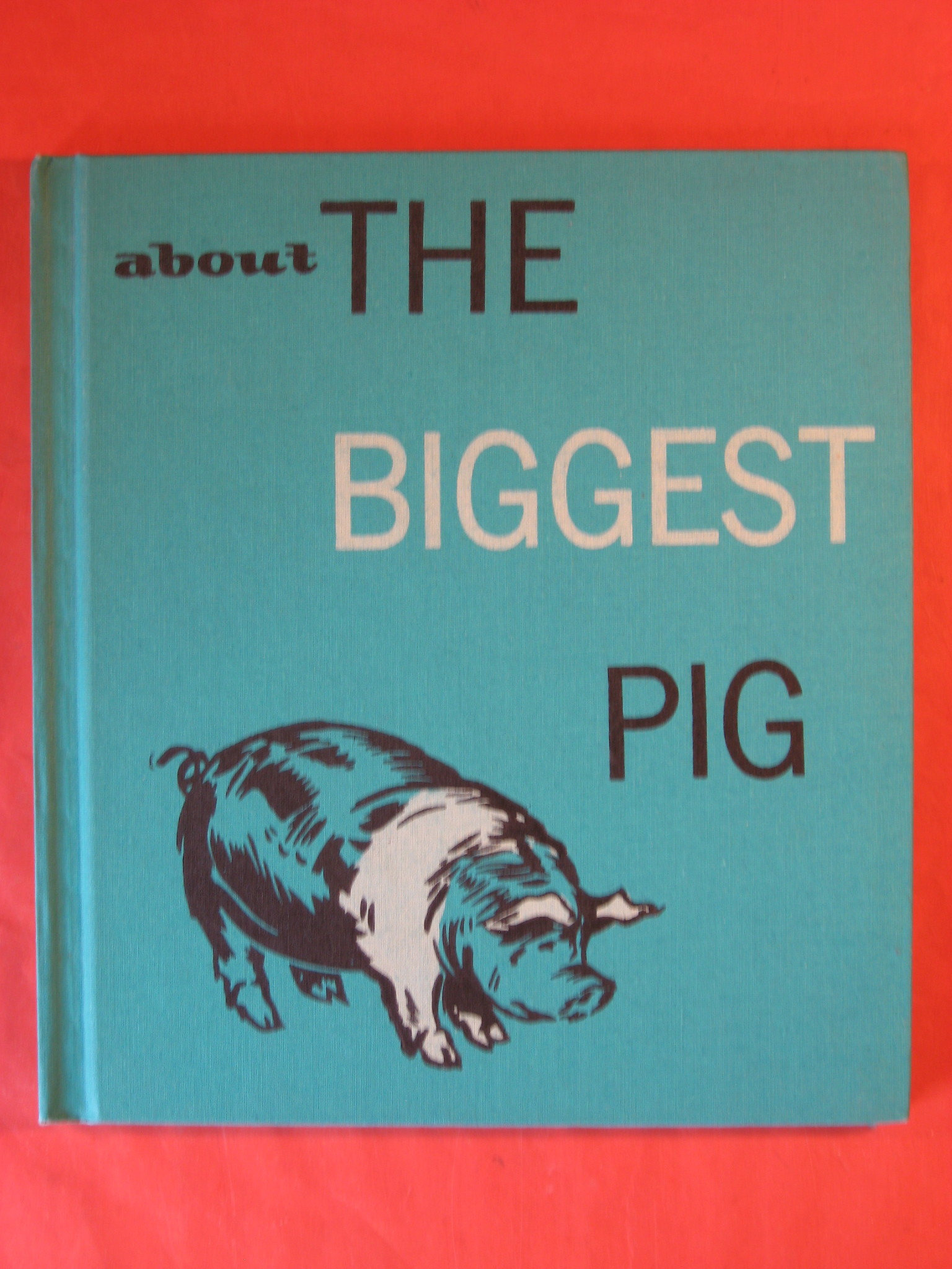 About the Biggest Pig, Hayes, Will