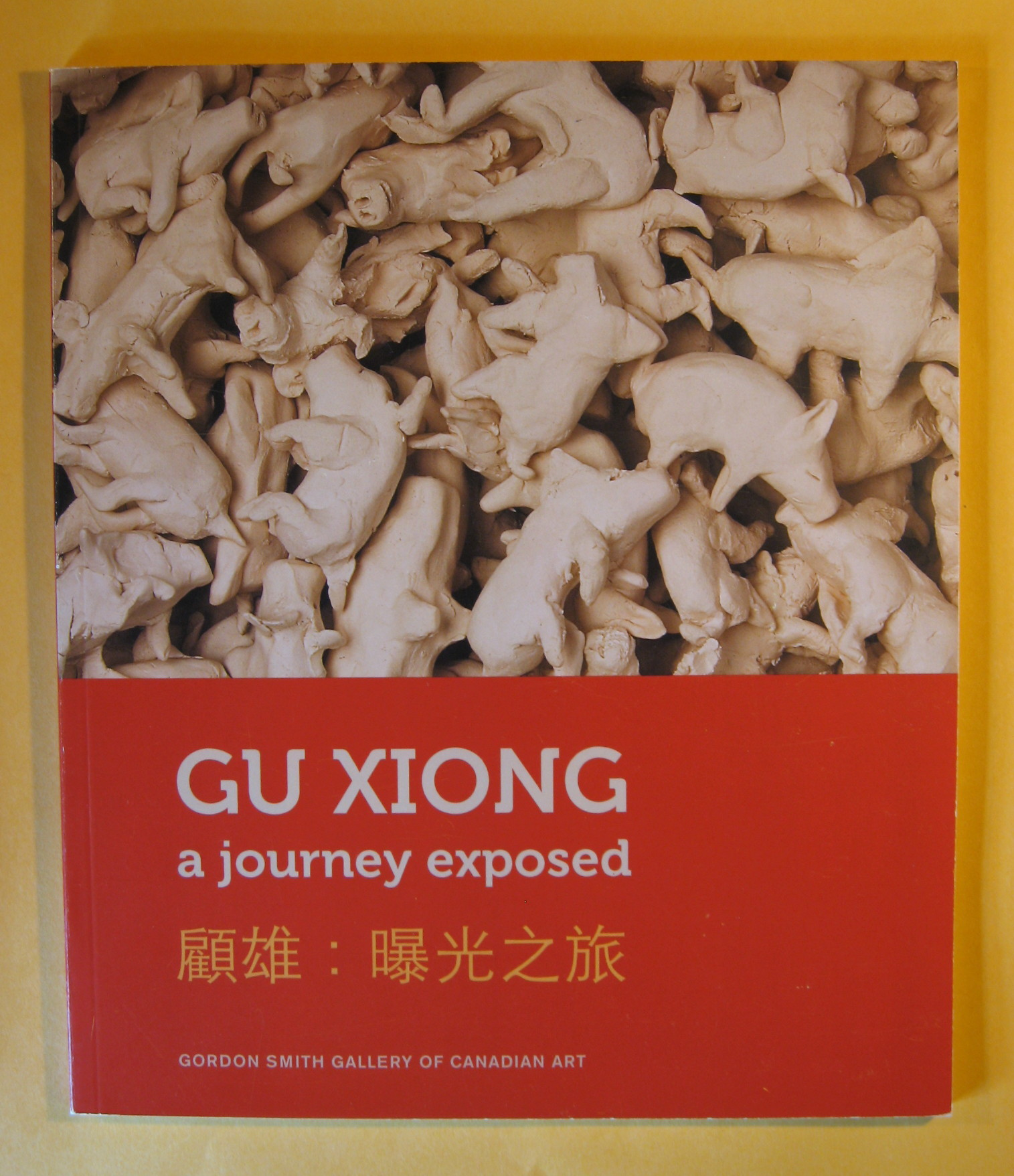 Image for Gu Xiong : a journey exposed