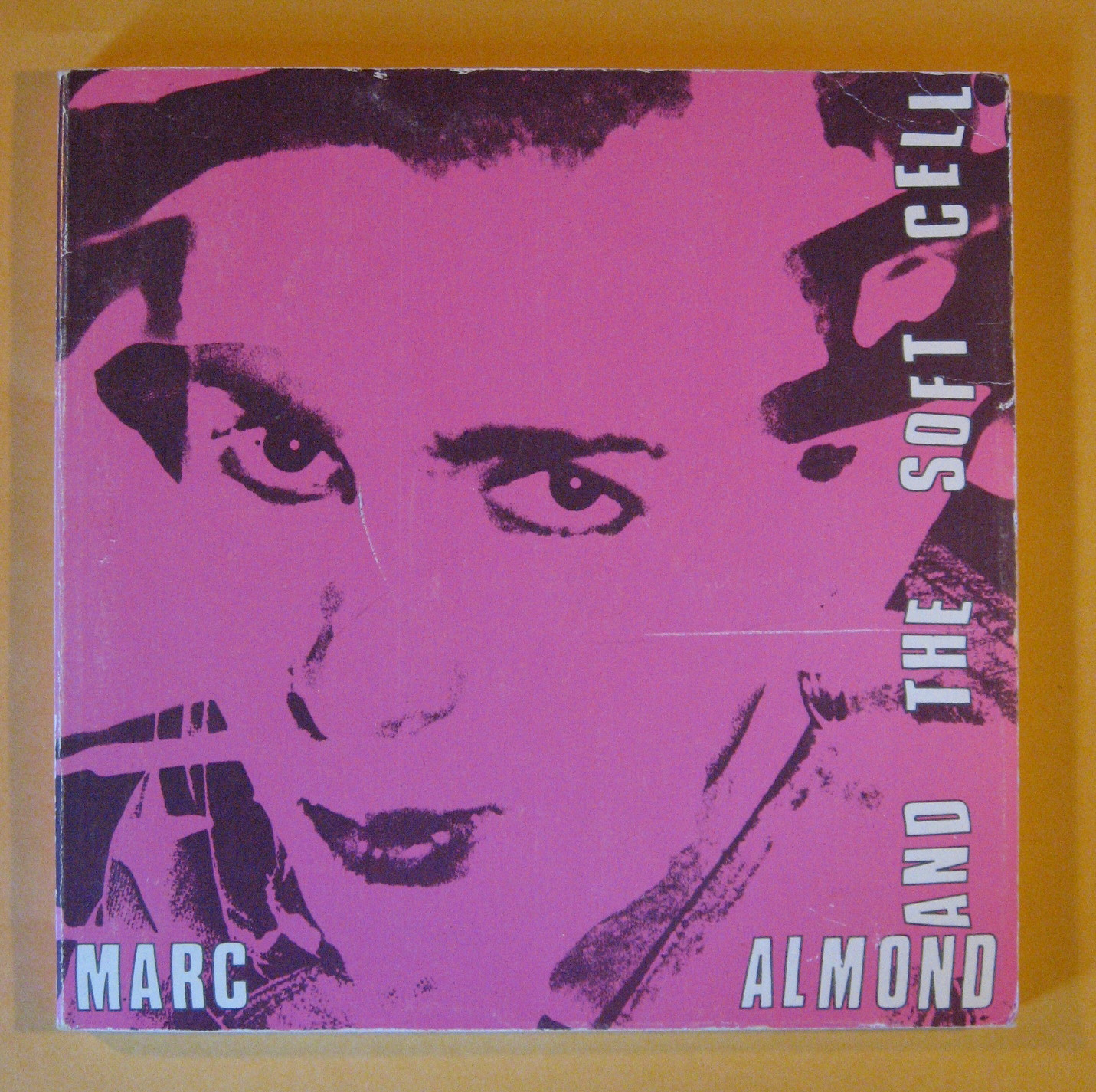 Marc Almond and the Soft Cell
