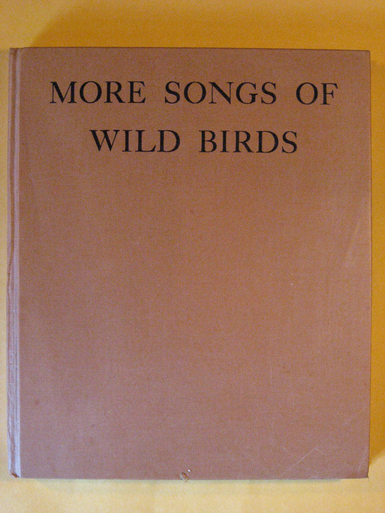 More Songs of Wild Birds, Brand, Albert R.