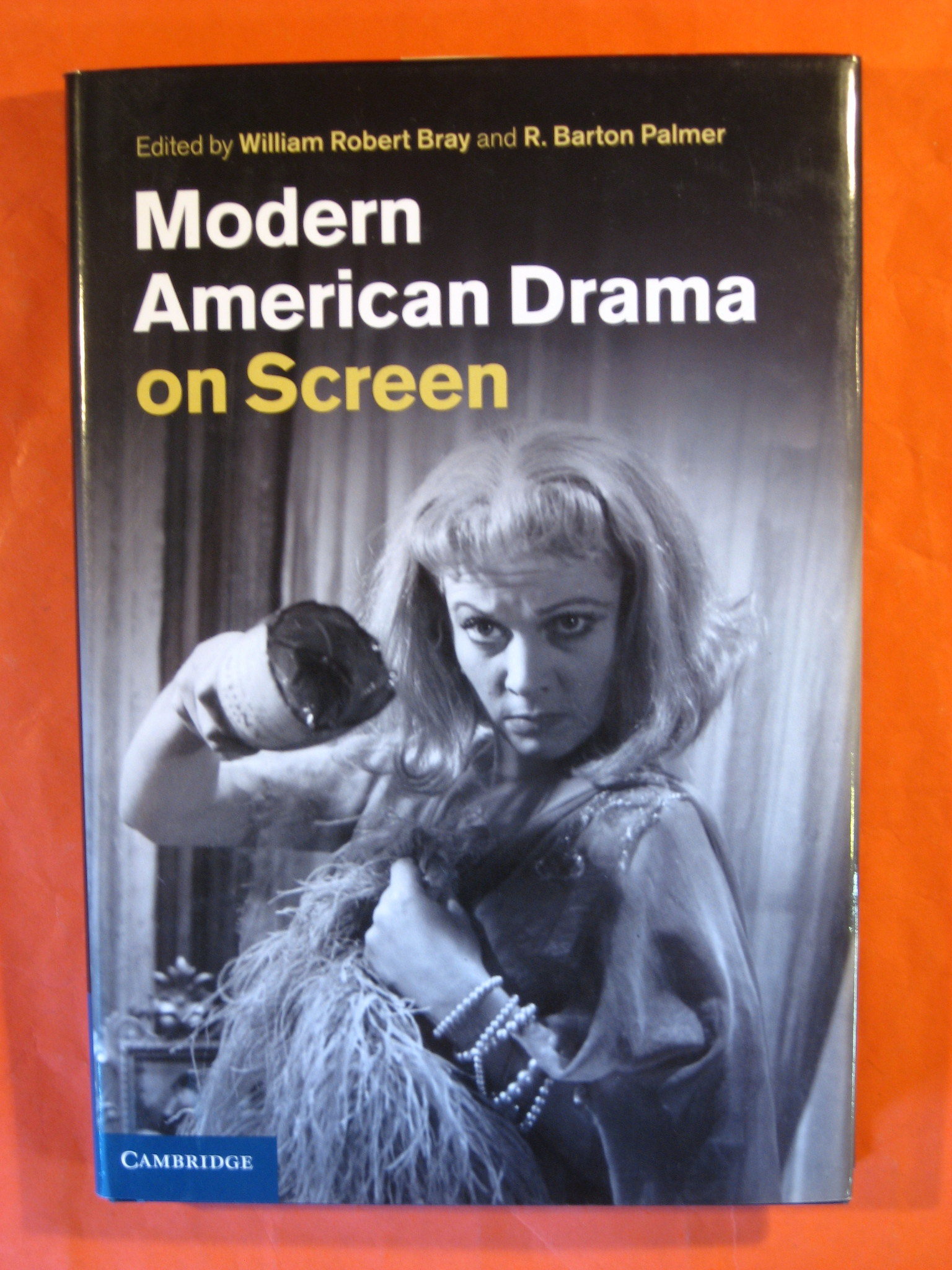 Modern American Drama on Screen, Bray, William Robert; Palmer, R. Barton