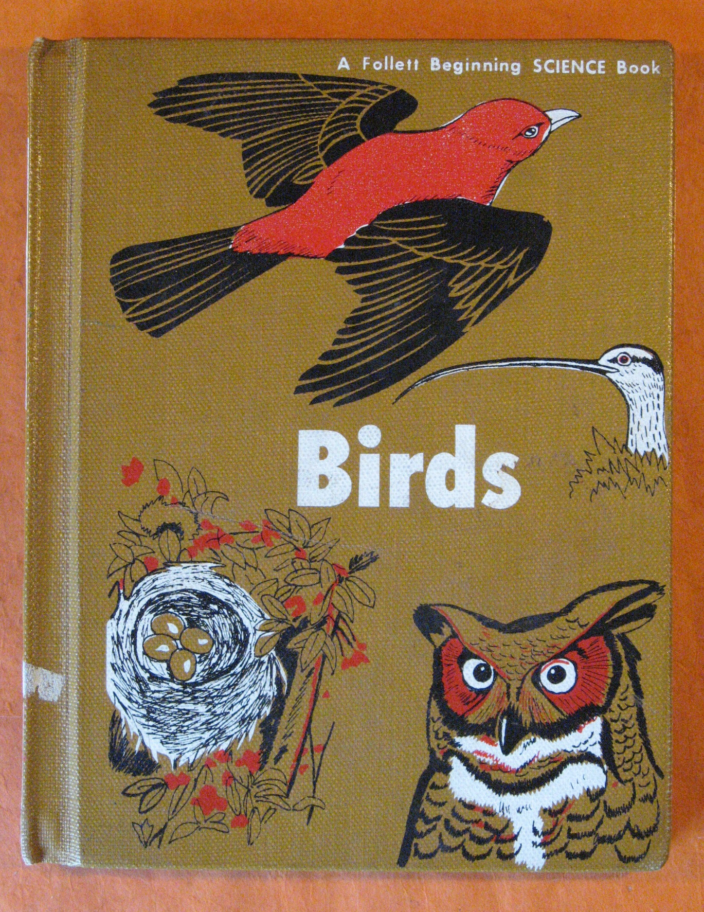 Birds (A Follett Beginning Science Book), Wasson, Isabel B.