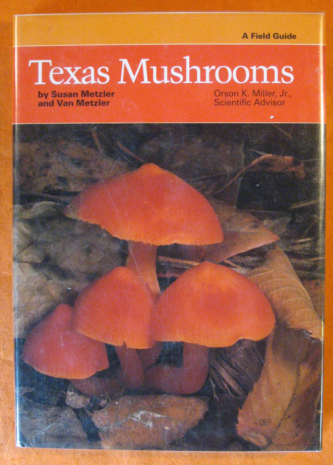 Texas Mushrooms: A Field Guide, Metzler, Susan; Metzler, Van