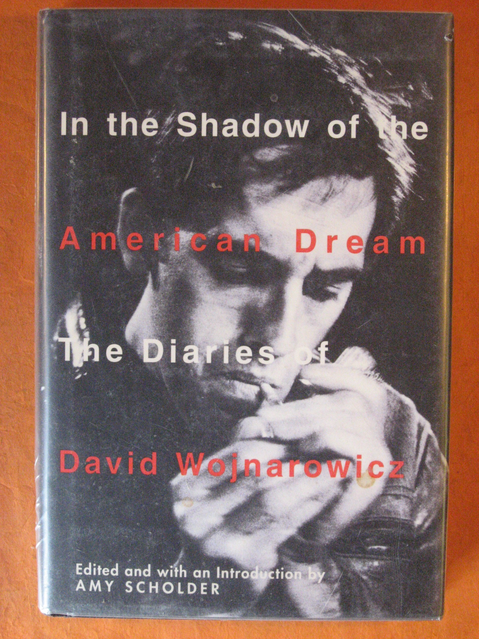 In the Shadow of the American Dream: The Diaries of David Wojnarowicz, Wojnarowicz, David; Scholder, Amy