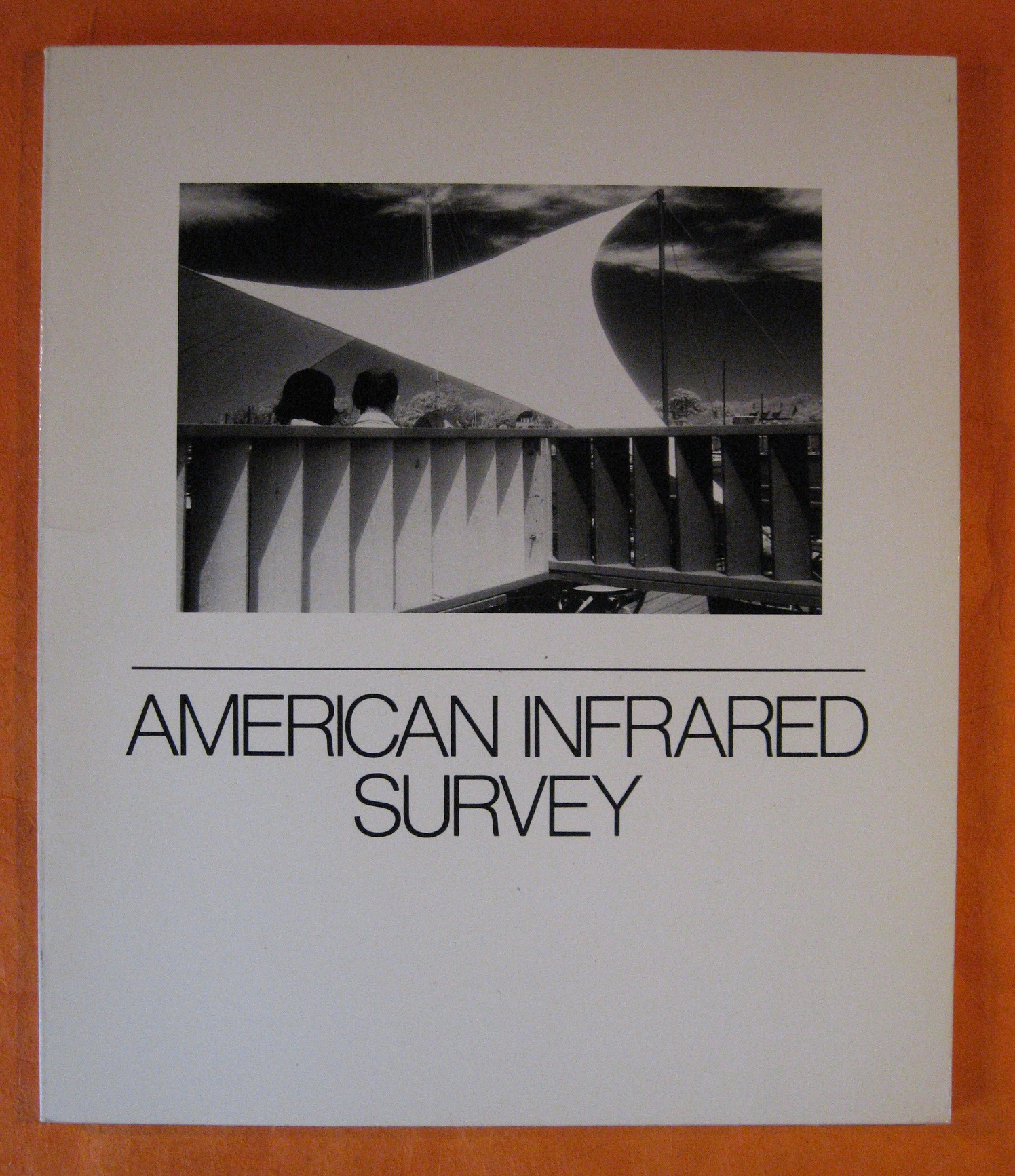 Image for American Infrared Survey: A Celebration of Infrared Photography