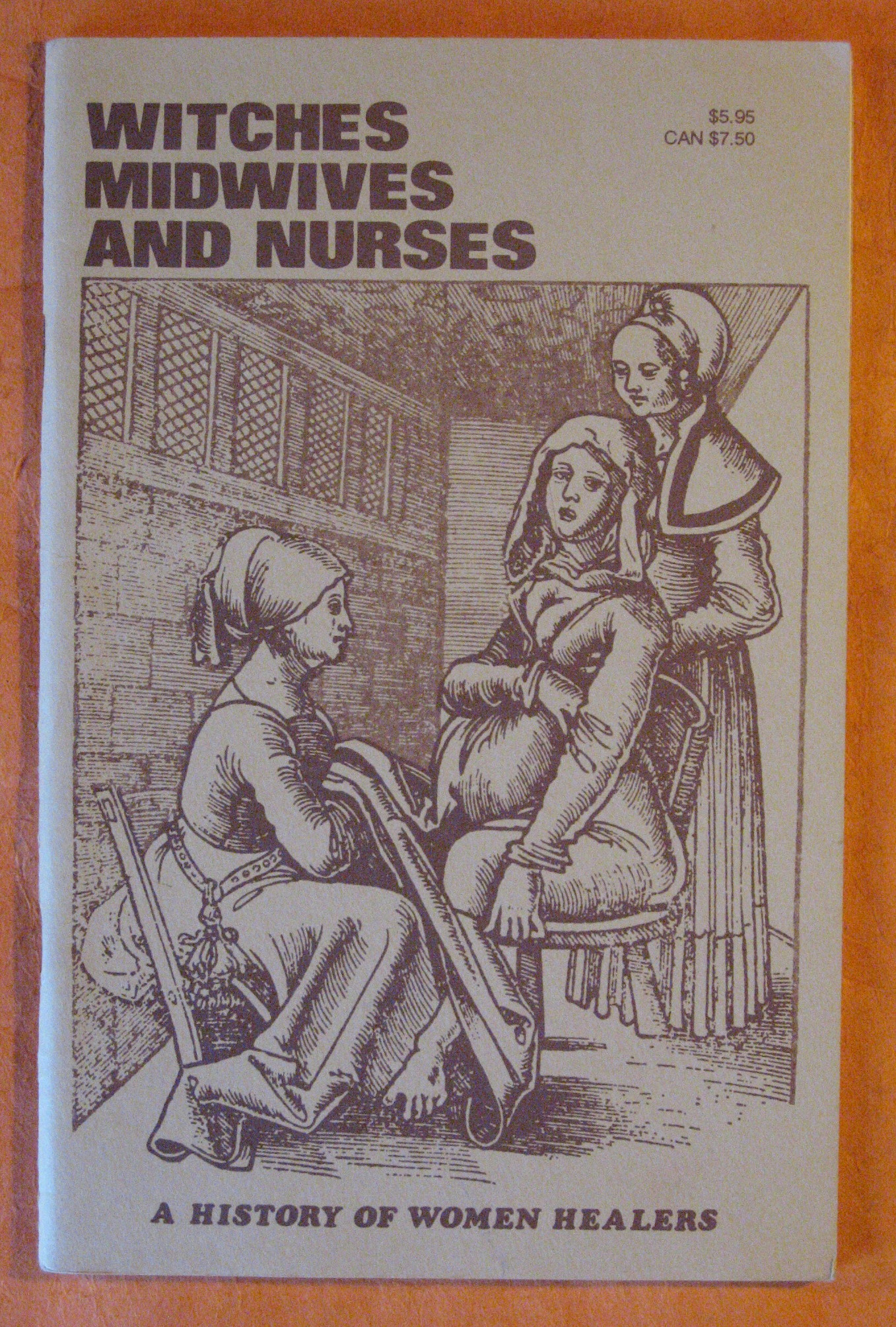 Witches, Midwives, and Nurses: a History of Women Healers, Ehrenreich, Bartbara & English, Deirdre