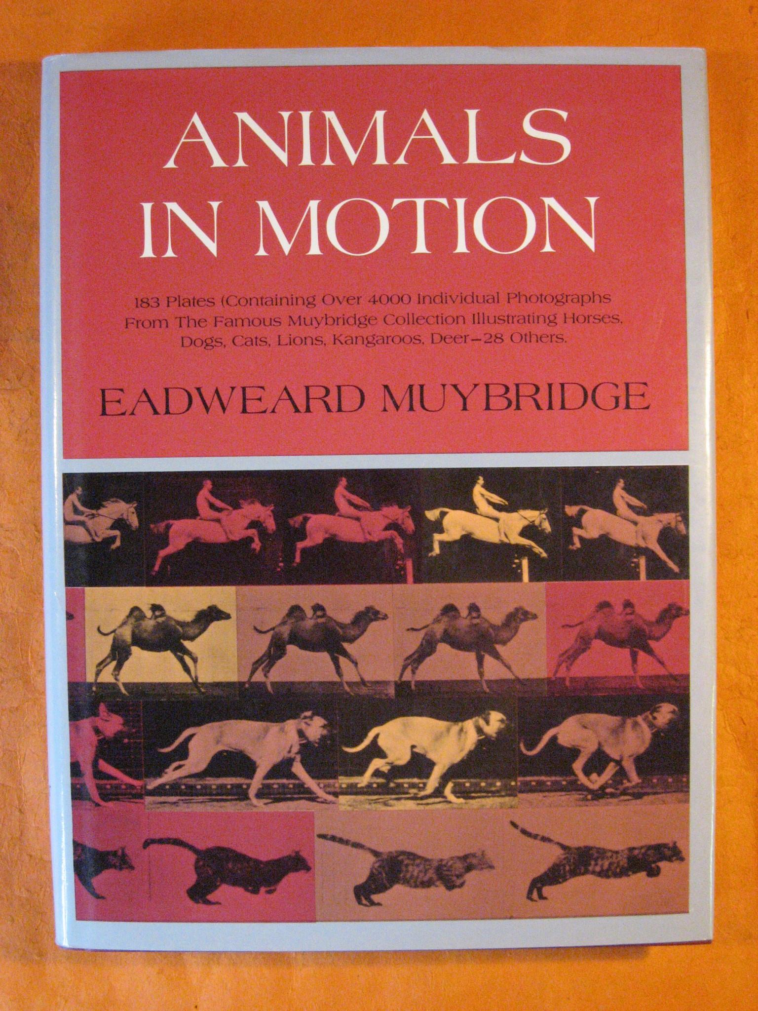 Animals in Motion, Muybridge, Eadweard