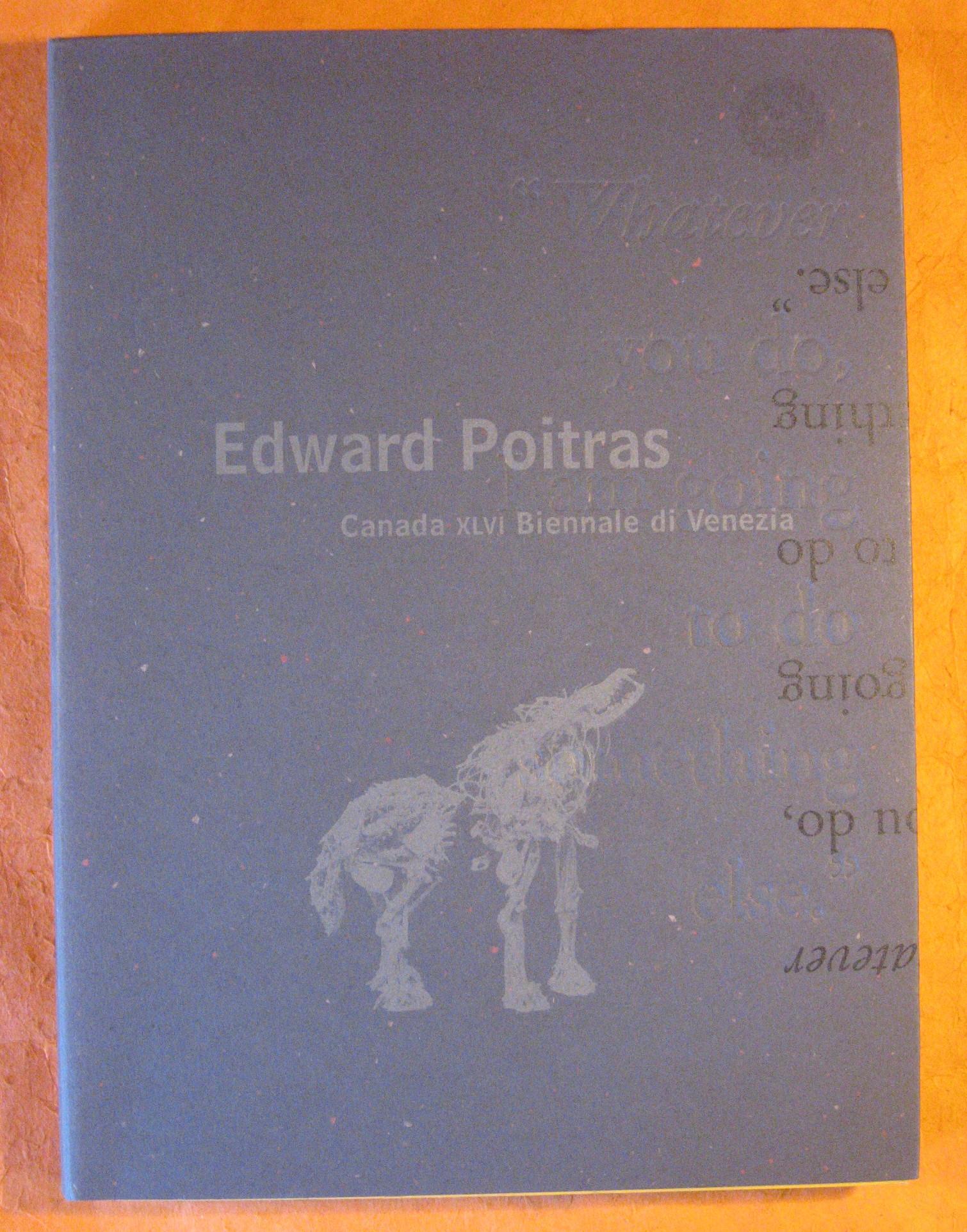 Edward Poitras: Canada XLVI Biennale di Venezia, McMaster, Gerald