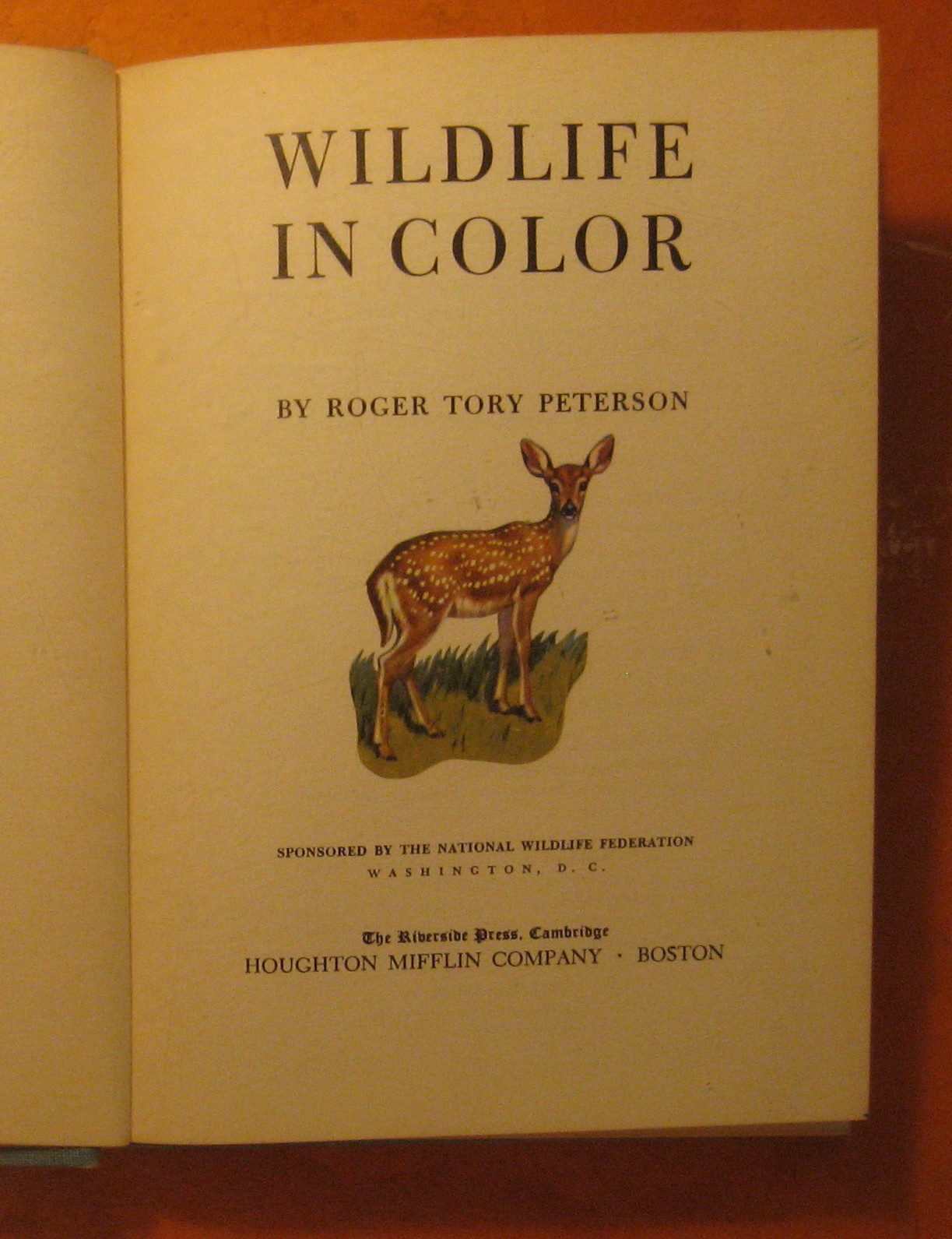 Image for Wildlife in Color