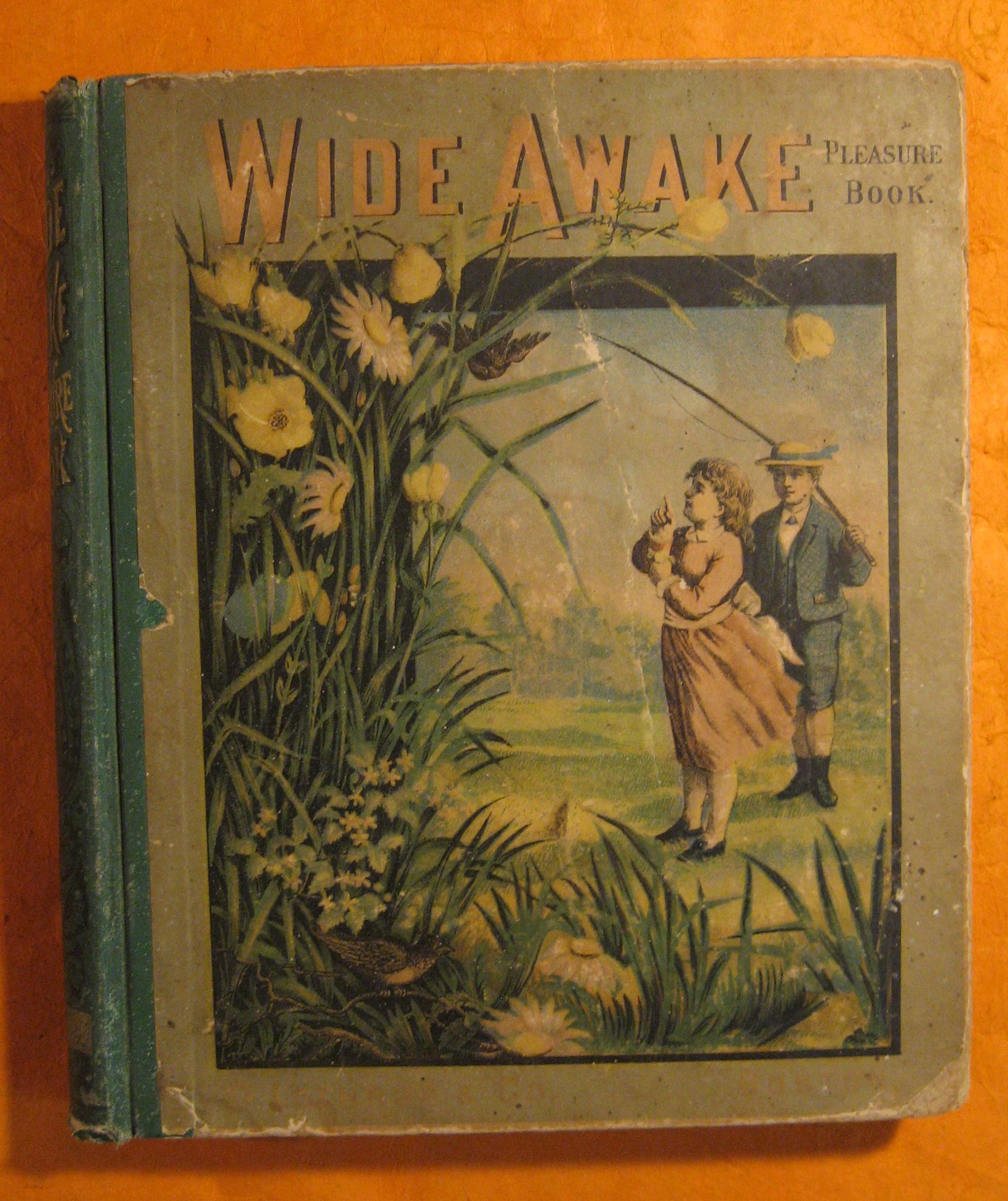Wide Awake Pleasure Book