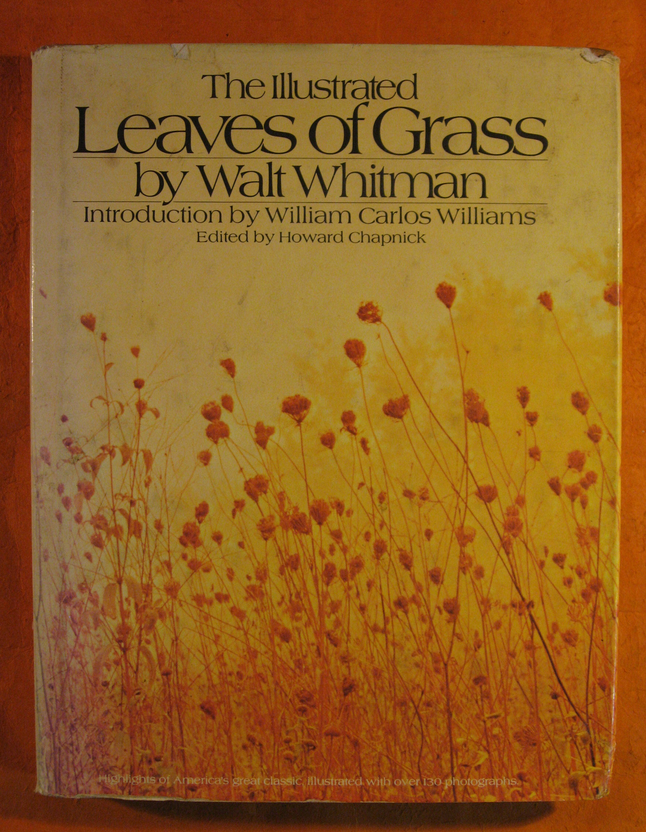 Image for The Illustrated Leaves of Grass