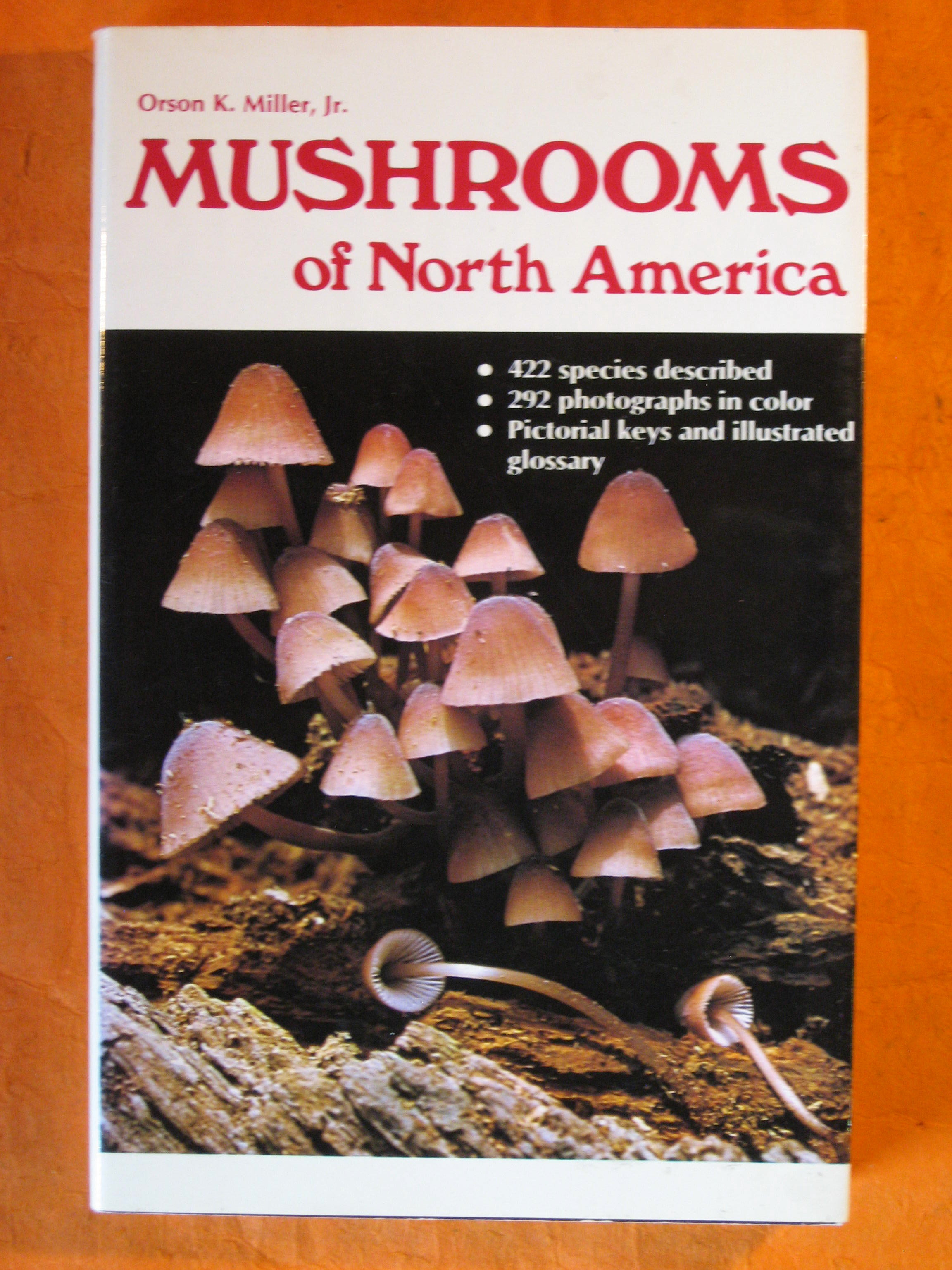 Image for Mushrooms of North America