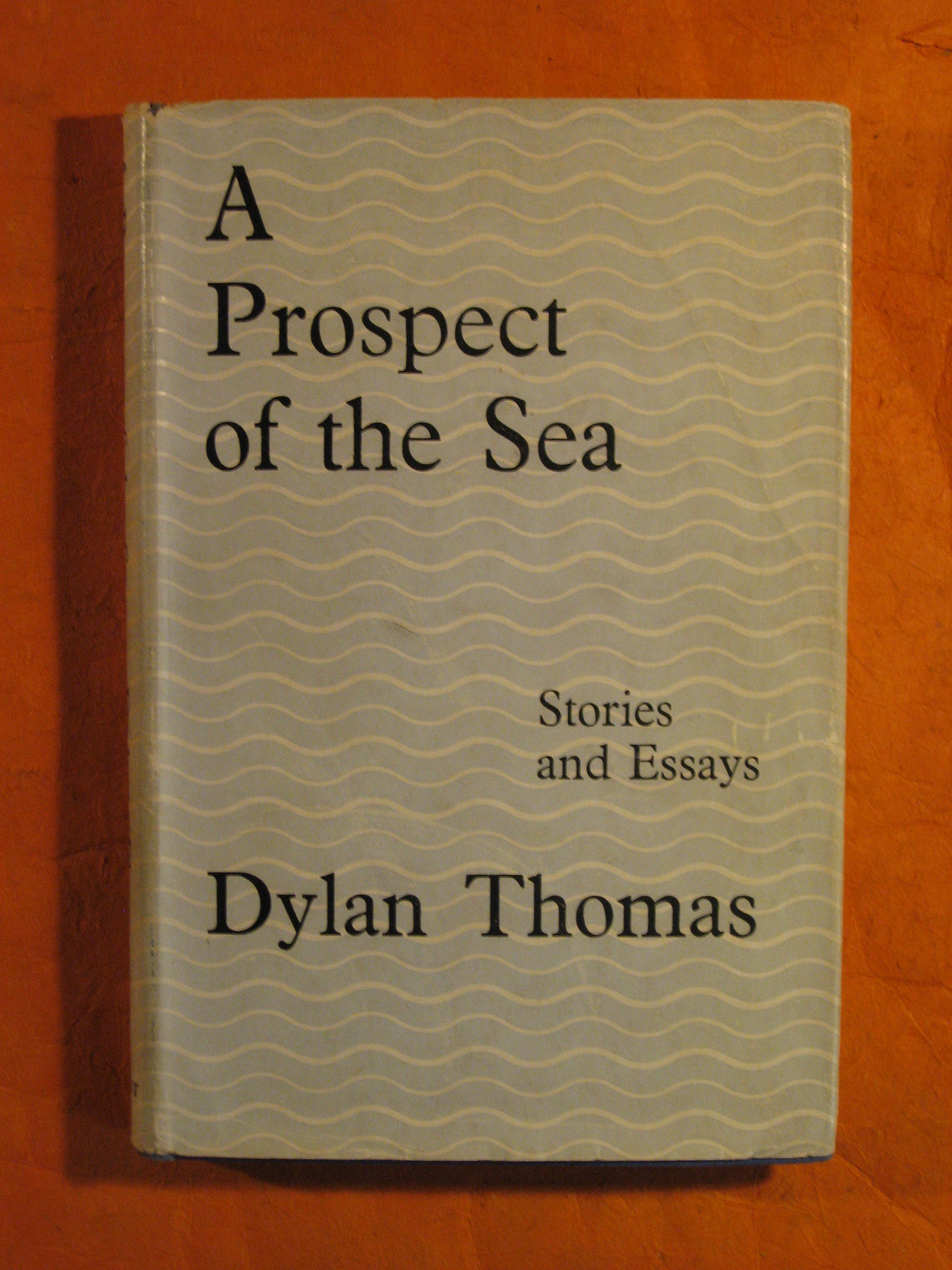 Image for A Prospect of the Sea:  Stories and Essays